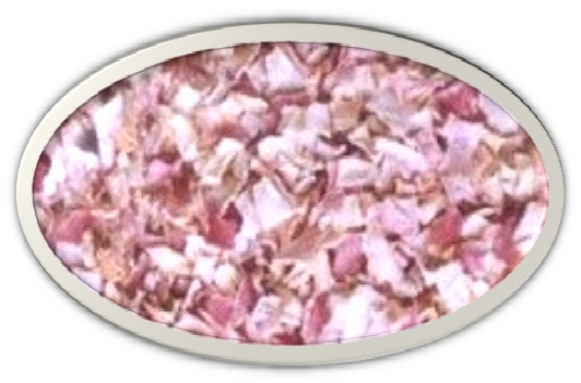 RED ONION [Granules]